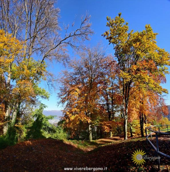 autunno berghem