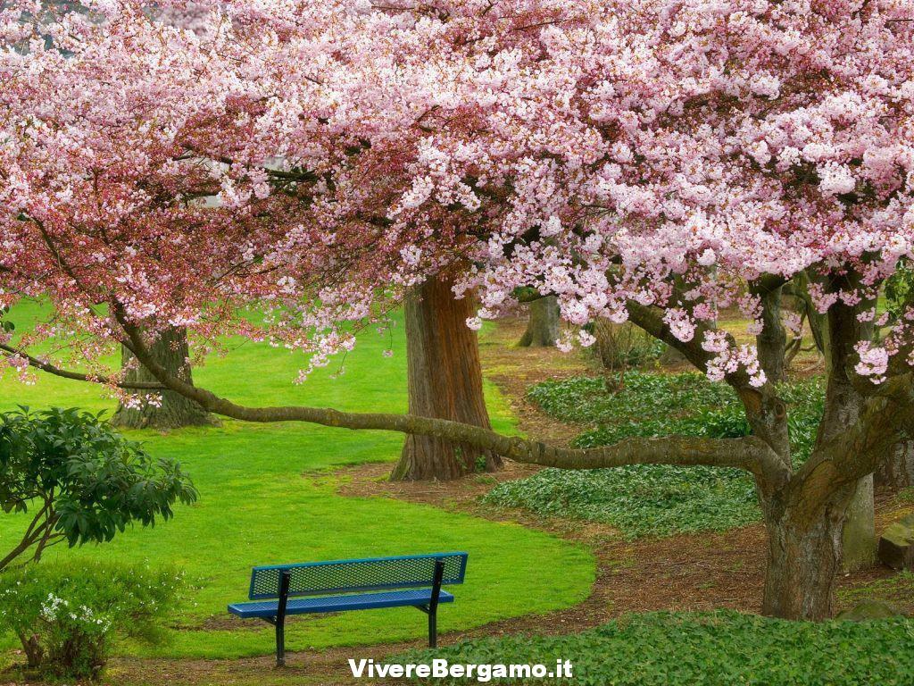 Natura Amica Vivere Bergamo