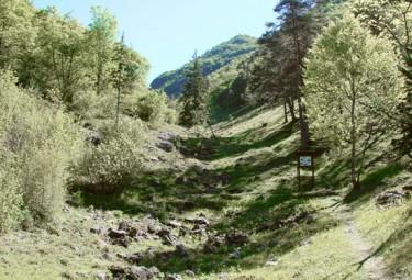 Riserva Naturale della Valle del Freddo