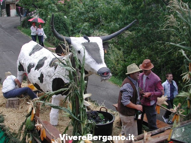 41° Festa dell' uva e dei fiori 2016 a Foresto Sparso Sfilata Carri