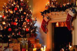 Tradizione Albero di Natale