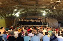 Festa della Madonna di Vigano San Martino