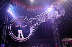 American Circus – Bergamo